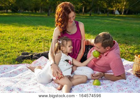 Happy Young Family Having Picnic At Meadow