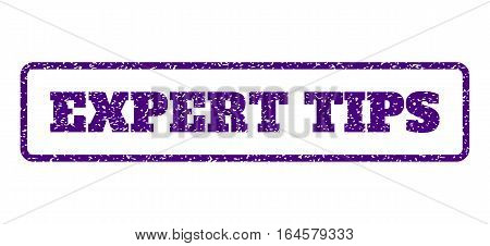 Indigo Blue rubber seal stamp with Expert Tips text. Vector caption inside rounded rectangular shape. Grunge design and dust texture for watermark labels. Horisontal sign on a white background.
