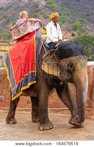 Amber, India - March 1: Unidentified People Ride Decorated Elephant To Amber Fort On March 1, 2011 I