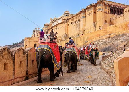 Amber, India - March 1: Unidentified People Ride Decorated Elephants To Amber Fort On March 1, 2011