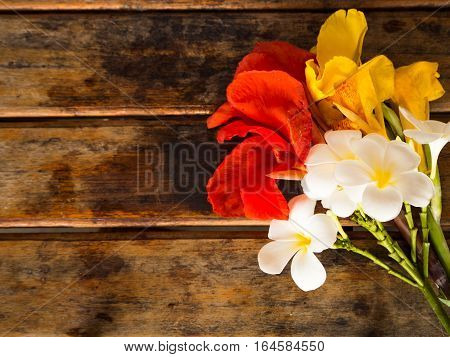 Red Yellow Canna and Plumeria flower on wooden background