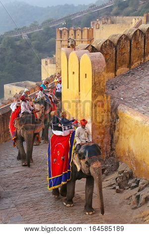 Amber, India - November 13: Unidentified People Ride Decorated Elephants To Amber Fort On November 1