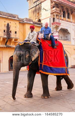Amber, India - November 13: Unidentified People Ride Decorated Elephant In Jaleb Chowk Of Amber Fort