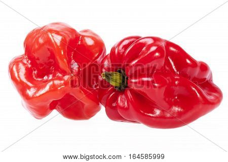 Vegetables of red chili pepper habanero isolated on white background.