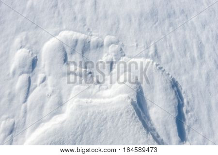 Close up of windy snow surface texture, winter background