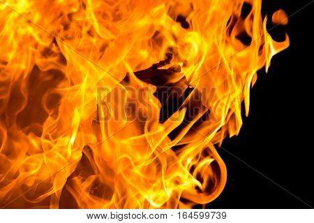 Fire flames isolated on a dark background