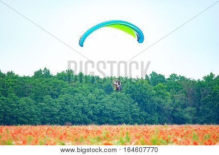 Bila Tserkva Ukraine. June 20 2016 Paragliding training flights with paramotor over blooming filed and forest