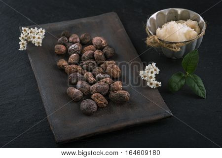 Shea butter and shea nuts on a chalkboard with copy space