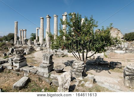 Aydin, Turkey - October 9, 2015: The ancient ruins of Aphrodisias in Geyre, Aydin