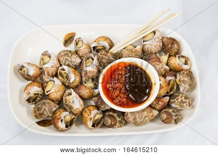 Sea Snails Is Delicacy Among Chinese In Hong Kong