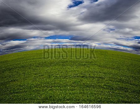 Nature background. Green grass field against a blue sky with wispy white clouds