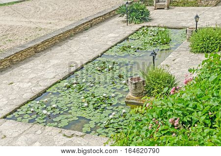 Pond With White Water Lily, Lotus Flower With Green Pads, Close Up.