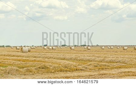 Countryside Field With Hay Bales, Baler, Blue Cloudy Sky.