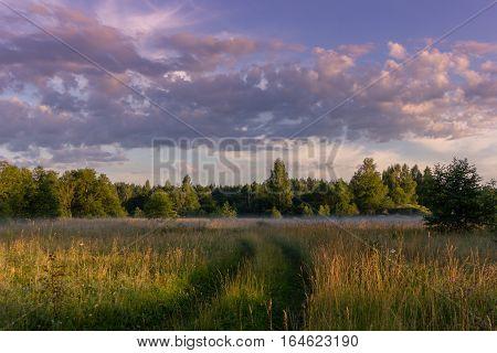 Field road at sunset, Novgorod oblast, Russia