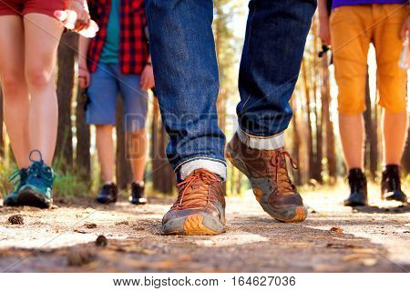 Close-up shooting of tourist's legs walking through the woods