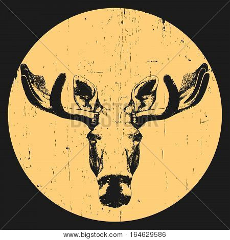 Portrait of Moose. Hand drawn illustration. Vector.