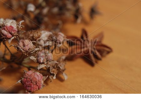 Sprig of dried raspberry and star anise on a wooden board, depth of field macro