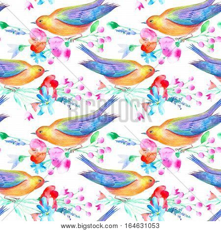 Seamless pattern of a bird and flowers. Poppy, bluebell, lavender, cornflower, berry, chamomile and daisy. Watercolor hand drawn illustration. White background.