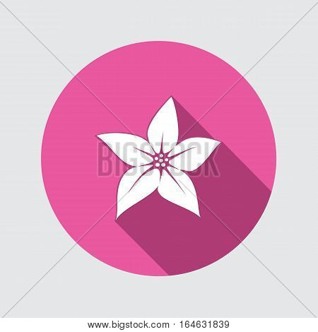 Lily flower icon. Floral symbol. Round circle flat sign with long shadow. Vector