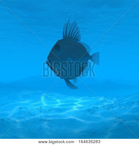 silhouette fish underwater with caustic 3d rendering