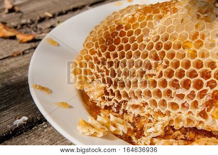 White Plate With Section Of Wax Honeycomb From Beehive On The Vintage Wooden Background With Copy Sp