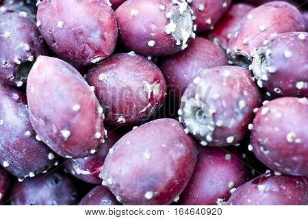 Prickly pear : Opuntia is a genus in the cactus family, Cactaceae. The most common culinary species is the Indian fig opuntia. Most culinary uses of the term