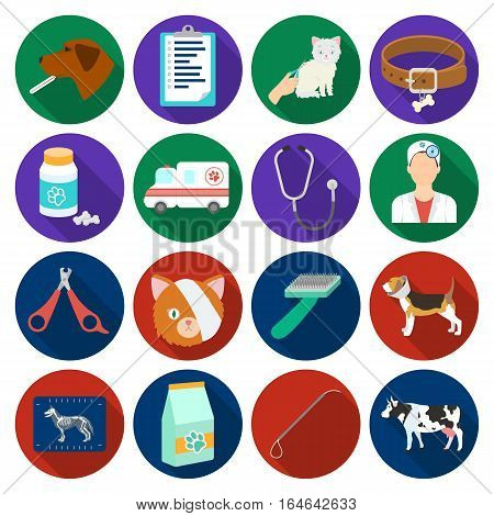 Veterinary clinic set icons in flat design. Big collection of veterinary clinic vector symbol stock illustration
