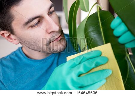 Adult Man Cleaning Pipal In Kitchen