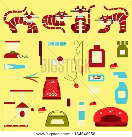 Set of sign cat accessories. Vector pet supplies. Animal equipment, care grooming tools and food, domestic feline