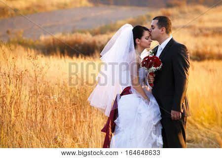 Fiance Kisses Bride's Forehead Somewhere On The Golden Field