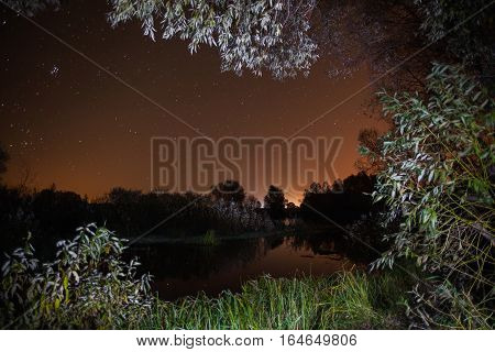 starry night the stars over the lake green grass trees illuminated by a flashlight the Milky Way