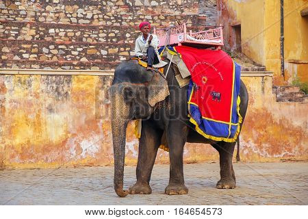 Amber, India - November 13: Unidentified Man Rides Decorated Elephant Near Amber Fort On November 13