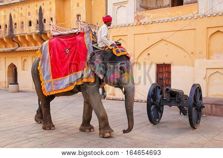 Amber, India - November 13: Unidentified Man Rides Decorated Elephant In Jaleb Chowk In Amber Fort O