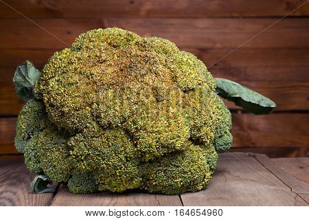 Fresh healthy useful broccoli vegetable on wooden table close up. Purple tinted