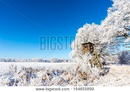 Wooden Brown Hunting Shelter Next To Frozen Trees