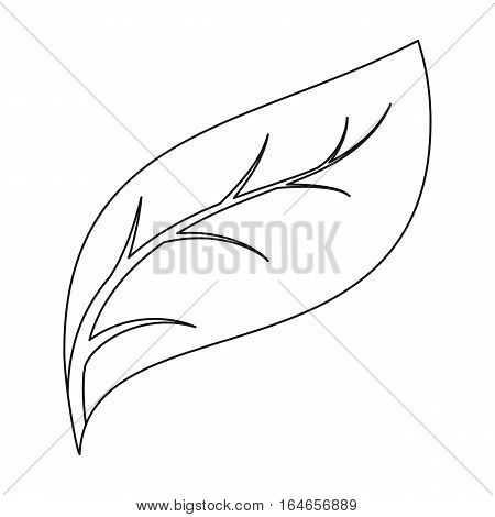 Eco leaf icon in outline design isolated on white background. Bio and ecology symbol stock vector illustration.