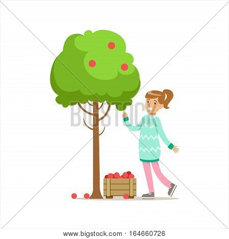 Girl Picking Up RIpe Red Apples From The Tree Helping In Eco-Friendly Gardening Outdoors Part Of Kids And Nature Series. Happy Child Interacting With Nature And Participating In Garden Clean-up Procedures Vector Illustration.