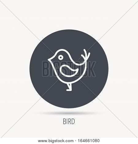 Bird with beak icon. Cute small fowl symbol. Social media concept sign. Round web button with flat icon. Vector