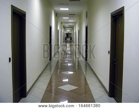 Long empty corridor with glossy floor in modern office building with many closed brown doors on left and right side