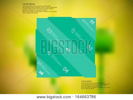 Illustration infographic template with motif of green rectangle askew divided to five sections with simple signs. Blurred photo with natural motif with couple of poppy blooms is used as background.