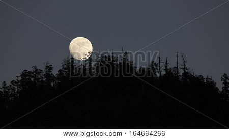 Full moon rise over a forest. Full moon night in Nepal.