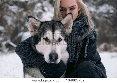 Portrait of girl with big Malamute dog on winter background. Girl sits next to dog and hugging dog's neck.