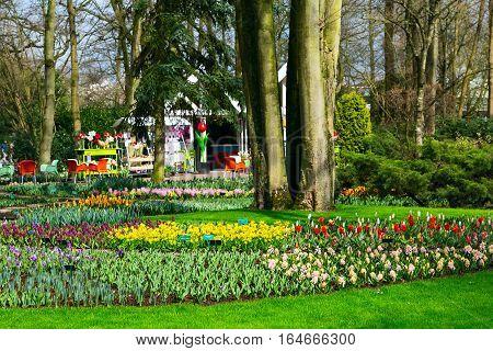 Lisse, Netherlands - April 4, 2016: Pavillion and flower blossom in dutch park spring garden, Netherlands