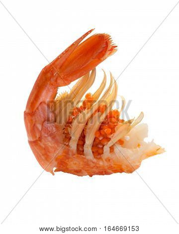 Boiled shrimp isolated on white.Cooked shrimps. Seafood