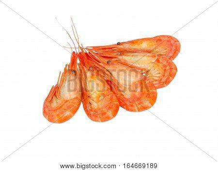 Cooked shrimps isolated on white background. Boiled shrimp. Prawns. Seafood
