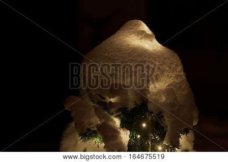 An illuminated Christmas tree under a snow cover.