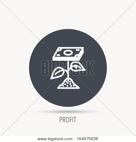 Profit icon. Money savings sign. Flower with cash money symbol. Round web button with flat icon. Vector