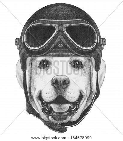 Portrait of Labrador with Vintage Helmet. Hand drawn illustration.