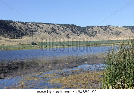 Alkali lake nature scenic in the autumn
