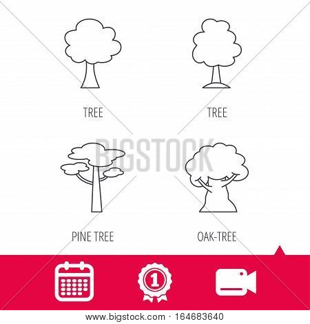 Achievement and video cam signs. Pine tree, oak-tree icons. Forest trees linear signs. Calendar icon. Vector